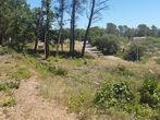Vente Terrain 785m² Trans-en-Provence (83720) - Photo 4
