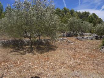 Vente Terrain Trans-en-Provence (83720) - photo