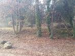 Vente Terrain 1 584m² Trans-en-Provence (83720) - Photo 2