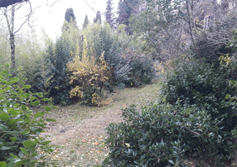 Vente Terrain 1 100m² Draguignan (83300) - Photo 1