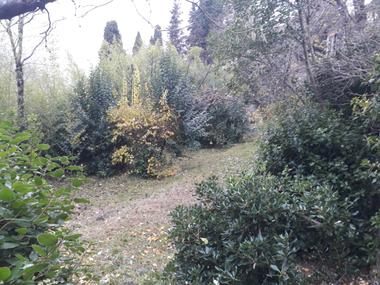 Vente Terrain 1 100m² Draguignan (83300) - photo