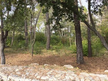 Vente Terrain 622m² Trans-en-Provence (83720) - photo