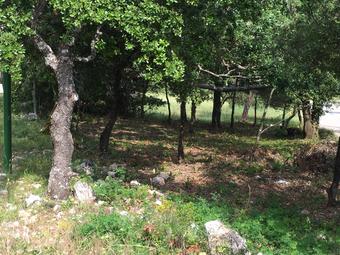 Vente Terrain 330m² Ampus (83111) - Photo 1