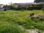 Vente Terrain 400m² Draguignan (83300) - Photo 2