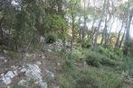 Vente Terrain 1 590m² Trans-en-Provence (83720) - Photo 5