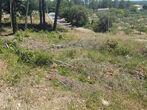 Vente Terrain 785m² Trans-en-Provence (83720) - Photo 7