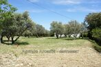 Vente Terrain 624m² Trans-en-Provence (83720) - Photo 1