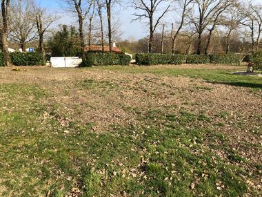 Vente Terrain 435m² Saint-Révérend (85220) - photo