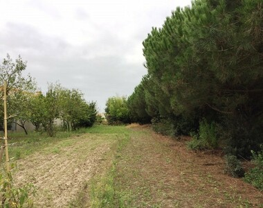 Vente Terrain Le Fenouiller (85800) - photo