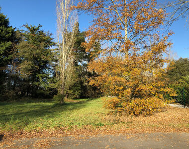 Vente Terrain 1 000m² Saint-Hilaire-de-Riez (85270) - photo