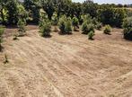 Vente Terrain 14 950m² LANDEVIEILLE - Photo 5