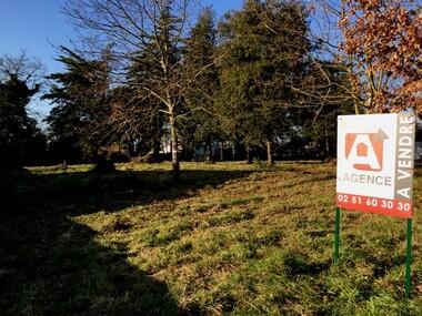 Vente Terrain L' Aiguillon-sur-Vie (85220) - photo