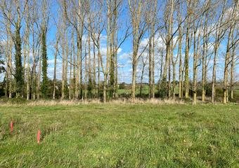 Vente Terrain 425m² NOTRE DAME DE RIEZ - Photo 1