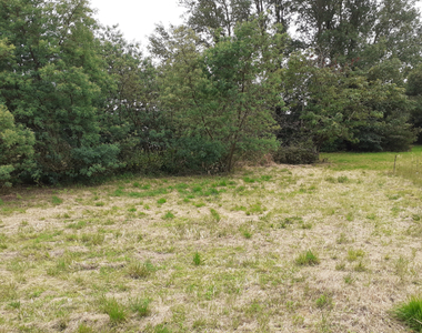 Vente Terrain 1 000m² SAINT HILAIRE DE RIEZ - photo