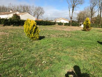 Vente Terrain 537m² Saint-Révérend (85220) - photo