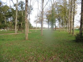 Vente Terrain Saint-Hilaire-de-Riez (85270) - photo