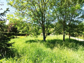 Vente Terrain 1 pièce 600m² Labarthe-sur-Lèze (31860) - Photo 1