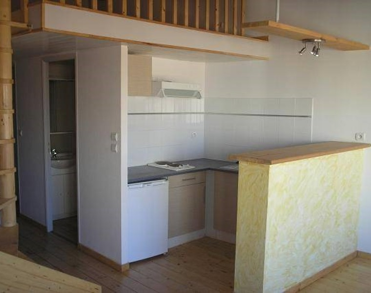 Renting Apartment 2 rooms 47m² Toulouse (31500) - photo