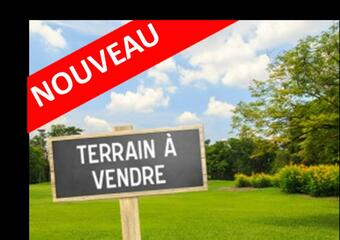 Vente Terrain Dunkerque (59640) - Photo 1