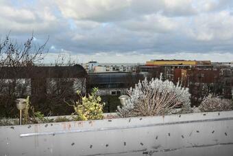 Vente Appartement 98m² Dunkerque (59640) - photo 2