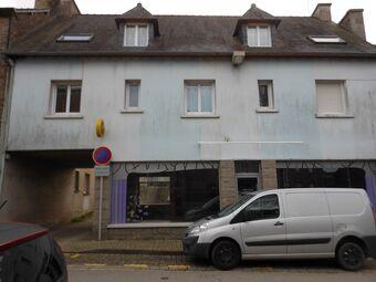 Vente Immeuble 7 pièces 280m² Plémet (22210) - photo