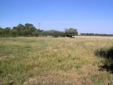 Vente Terrain 876m² Cornebarrieu (31700) - photo