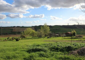 Vente Terrain 1 542m² Pelleport (31480) - photo