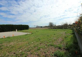 Vente Terrain 448m² Montaigut-sur-Save - photo
