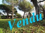 Vente Terrain 470m² Cornebarrieu - Photo 1