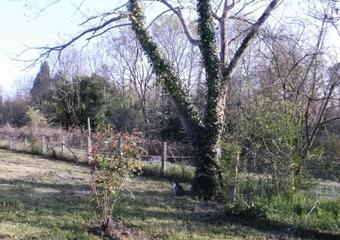 Vente Terrain 2 039m² Serres castet - Photo 1