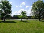 Vente Terrain 12 000m² Saint-Firmin-sur-Loire (45360) - Photo 2