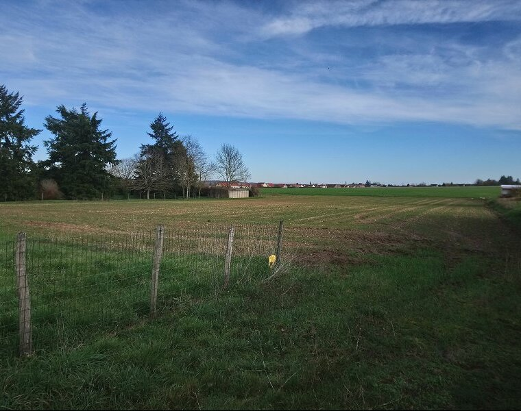 Vente Terrain 2 983m² Saint-Martin-sur-Ocre (45500) - photo