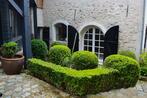 Vente Maison 8 pièces 265m² Chavenay (78450) - Photo 4