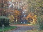 Sale Land 422m² Chavenay (78450) - Photo 4