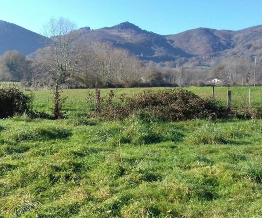Vente Terrain 800m² Sare (64310) - photo