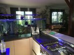 Vente Maison 8 pièces 200m² Anglet (64600) - Photo 5