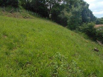 Vente Terrain 834m² Saint-Pée-sur-Nivelle (64310) - Photo 1