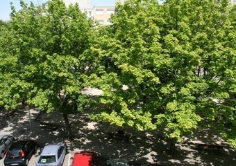 Location Appartement 2 pièces 65m² Firminy (42700) - photo