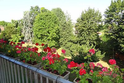 Vente Appartement 4 pièces 80m² Limeil-Brévannes (94450) - photo