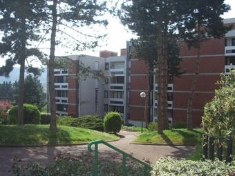 Location Appartement 1 pièce 36m² Palaiseau (91120) - Photo 1