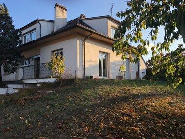 Sale House 8 rooms 181m² Ingersheim (68040) - photo