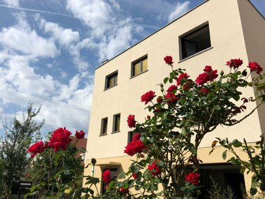 Vente Maison 5 pièces 120m² Horbourg-Wihr (68180) - photo