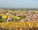 LA VILLA FOCH Ingersheim (68040) - Photo 3