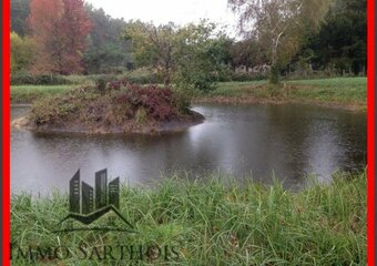 Vente Terrain 4 590m² Mayet (72360) - photo