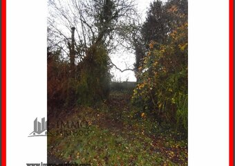 Vente Terrain 1 030m² sarce - photo