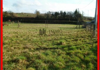 Vente Terrain 1 677m² chenu - photo