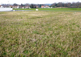 Sale Land 984m² DENGUIN - photo