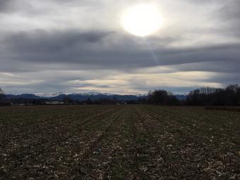 Vente Terrain 1 335m² Idron (64320) - Photo 1
