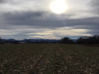 Sale Land 1 335m² Idron (64320) - Photo 1