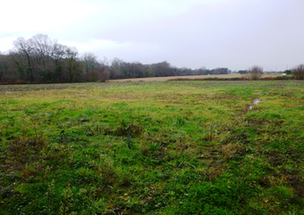 Sale Land 1 255m² Saint-Castin (64160) - Photo 1